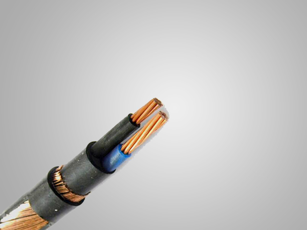 Two Cores Copper Concentric Neutral Screen Coaxial Cable